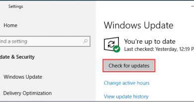 How to Solve DISM Error 87 Windows 10?